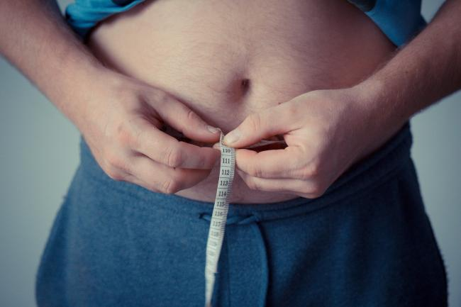 Bid - Government strategy to cut obesity                  Picture: Pixabay