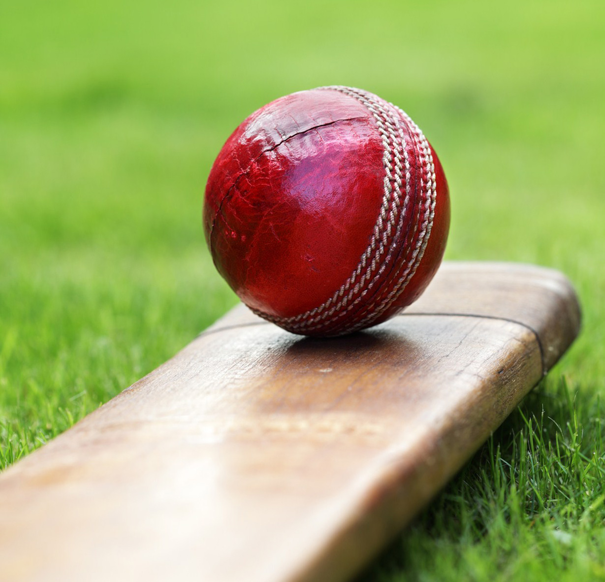 CRICKET: Round-up of the Brentwood teams in the T Rippon League