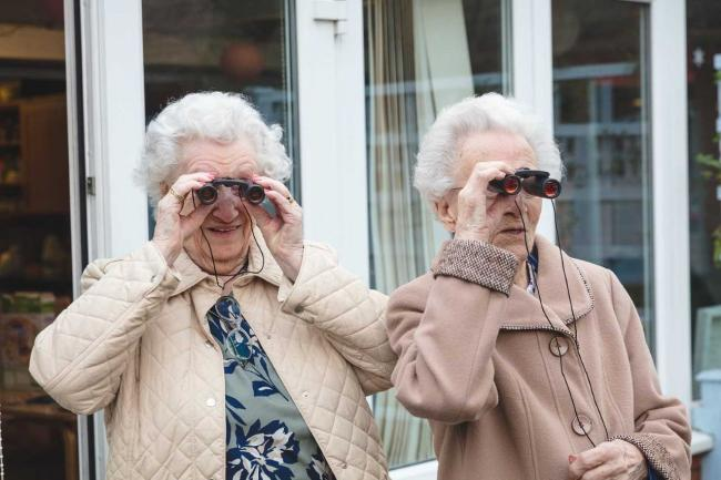 Chelmsford Care Home birdwatch
